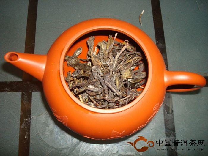 端午喝麻黑--麻黑古树茶