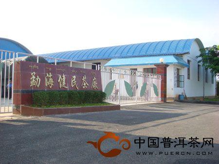 勐海健民茶厂