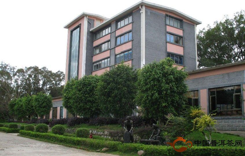 云南普洱茶厂