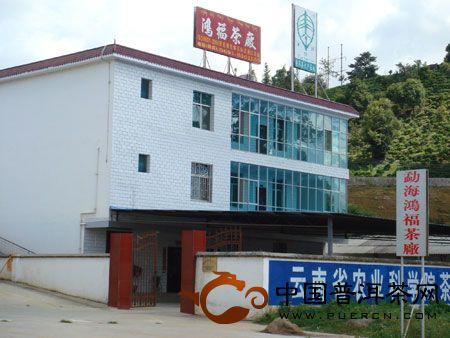 云南西双版纳勐海鸿福茶厂
