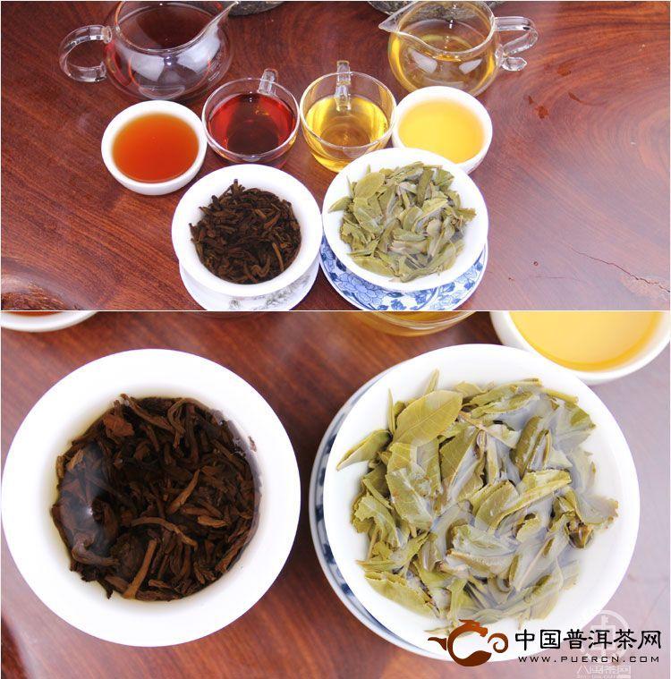 普洱生茶和熟茶哪个好喝