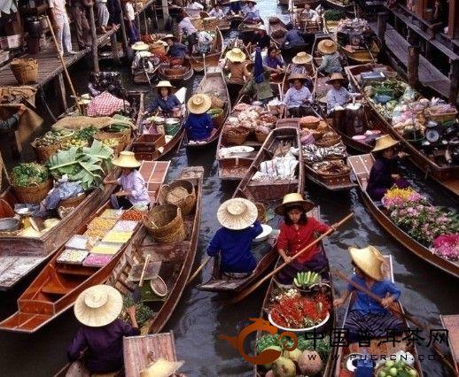普洱茶在泰国的传承