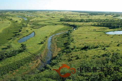 永德大雪山鸣凤山茶山、小帮贵茶山、梅子箐茶山的生态指数