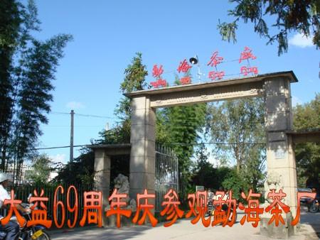 大益69周年庆参观勐海茶厂