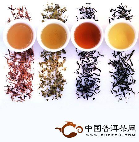 秋季适合喝普洱茶,秋饮普洱茶味更浓