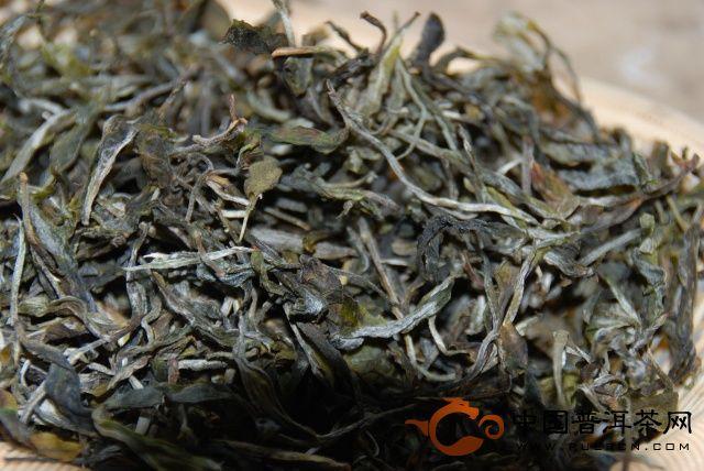 头天采摘炒制的新茶