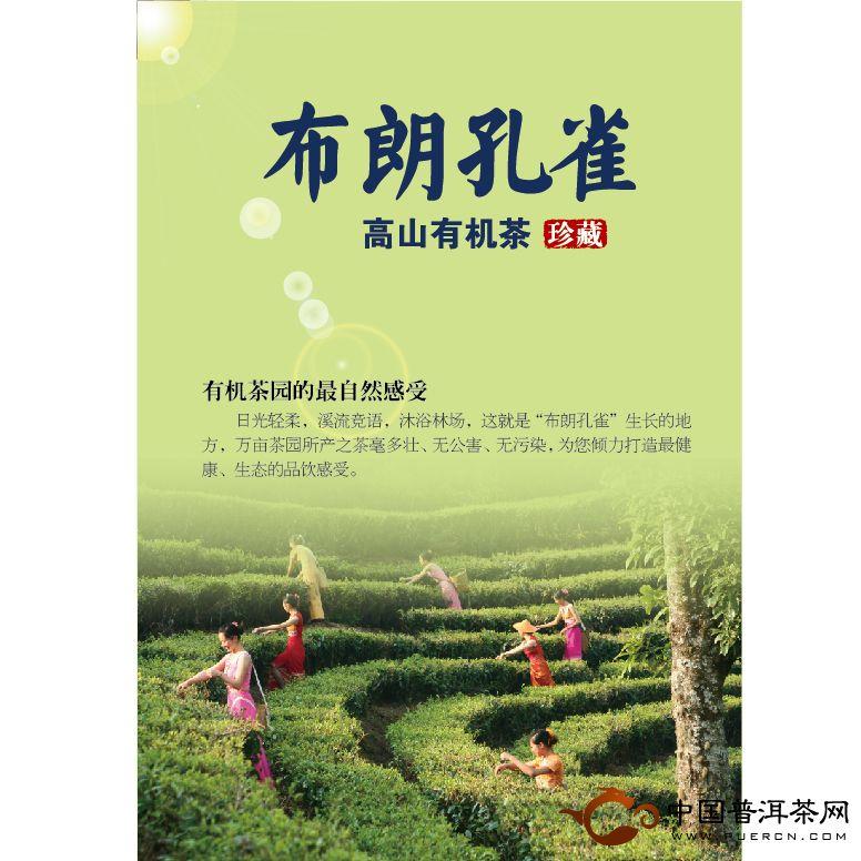 大益勐海茶厂2012布朗孔雀生茶
