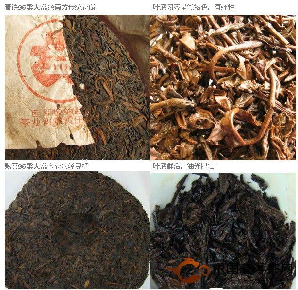 和普洱老泥一起学习普洱茶(7):品鉴中生代