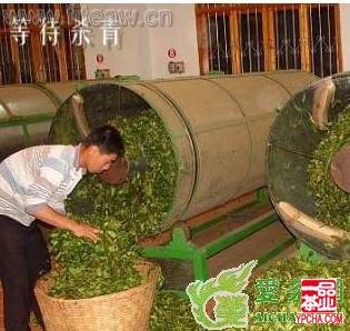 绿茶的加工 - 茶叶制作过程