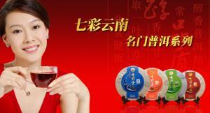 七彩云南普洱茶品牌专区