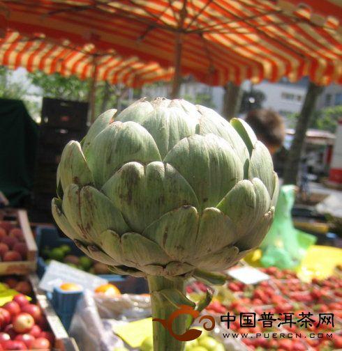 """奢侈一把:煮食""""蔬菜之王""""洋蓟"""