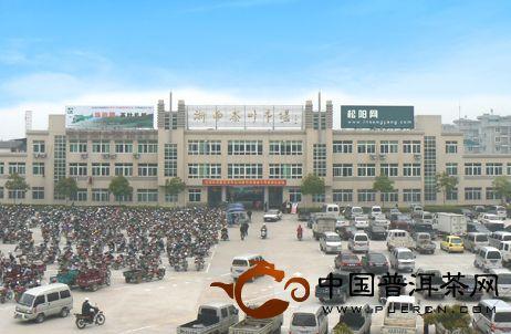 浙南茶叶市场:中国绿茶第一市