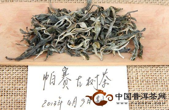 2013年帕赛古树茶品鉴
