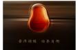 普洱茶膏贡润祥:新姿态 领变革