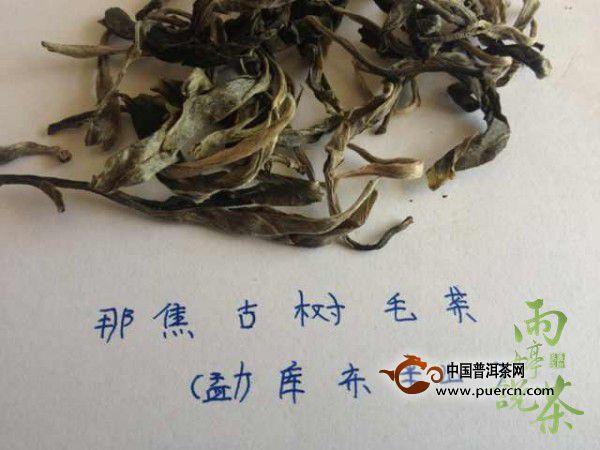 【益心泉·雨婷说茶】寻茶问源:临沧勐库东半山那焦村组图