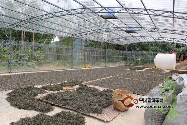 【益心泉·雨婷说茶】寻茶问源:临沧市邦东乡邦包村组图