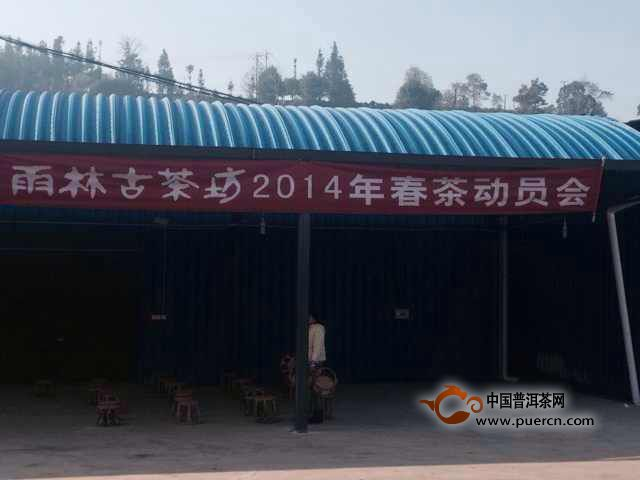 雨林古茶坊2014年春茶动员大会