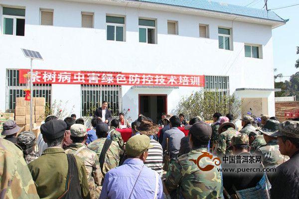 陈升茶业向老班章村民传播绿色防控知识