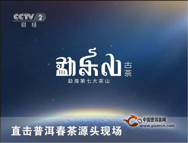 【图阅】央视cctv2携手勐乐山直击普洱春茶源头现场