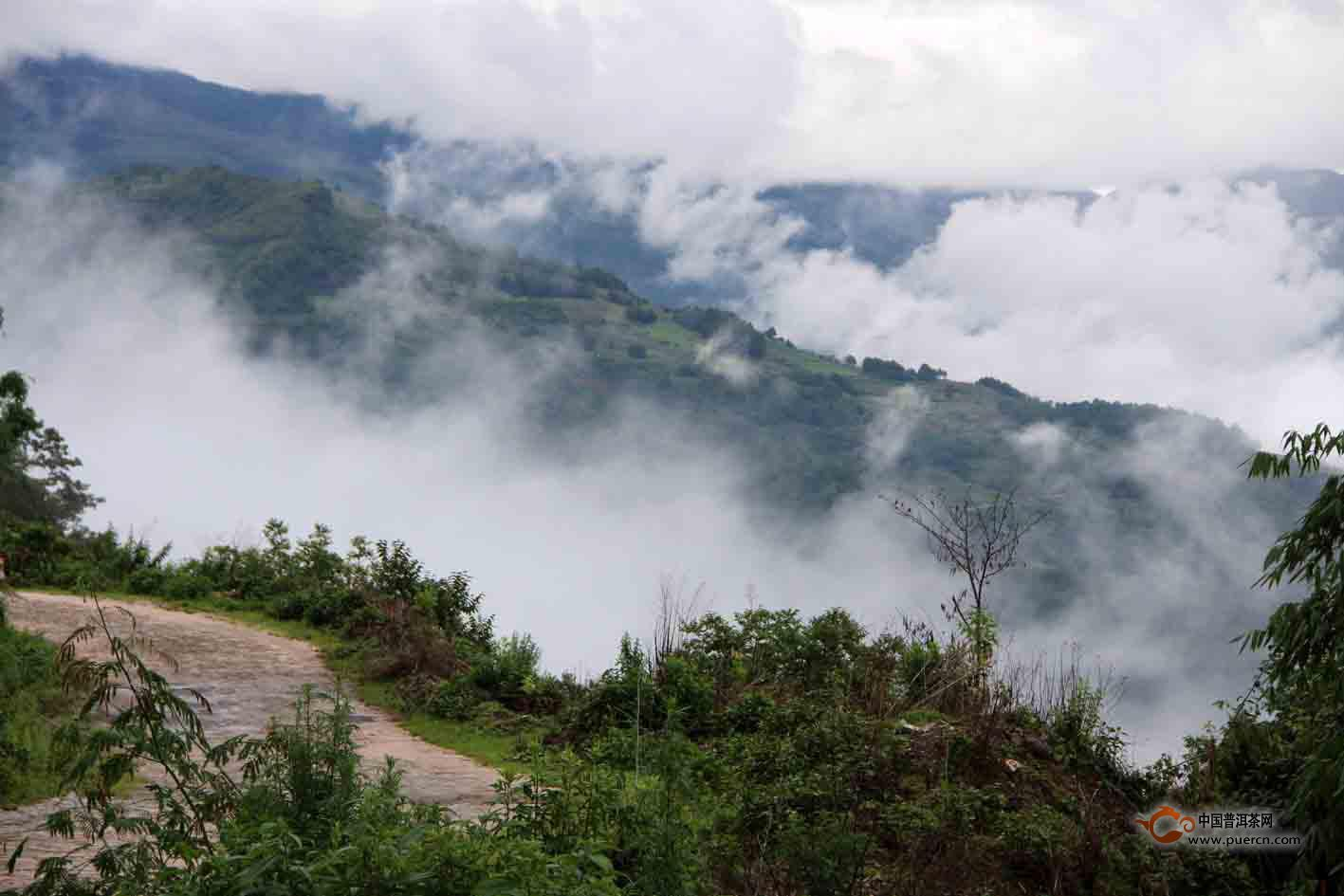 印象邦丙:云雾中的恬静秘境——山青篇
