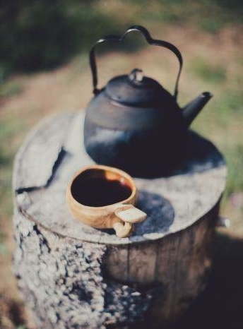 麻黑古树普洱茶——易武的代表茶