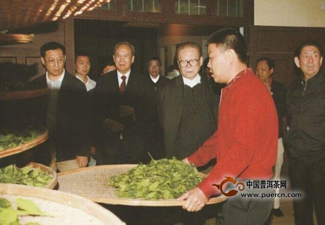 揭秘:神奇的茶王——母树大红袍