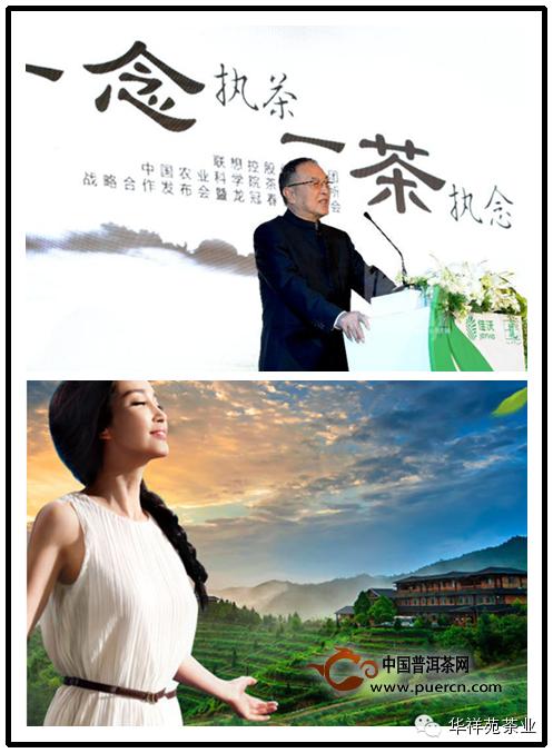 2014茶叶大事件之闽茶【十宗最】--值得推荐!