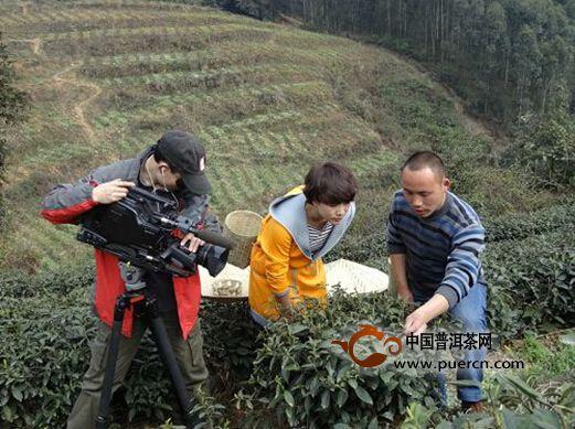 四川电视台《吃八方》栏目摄制组走进茶祖故里名山