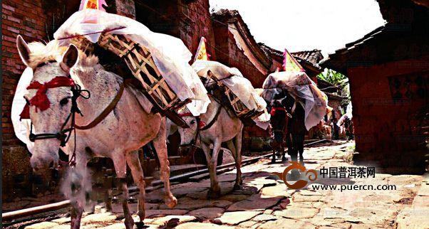 普洱江城:被低估的茶文化历史