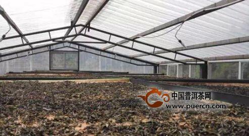 2015云南茶山全程实录,千里足迹
