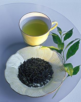 阳春三月最宜喝什么茶