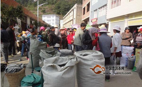 南涧县乐秋乡2015年春茶大量上市