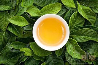 茶叶用辛香花类植物中原保存与利用
