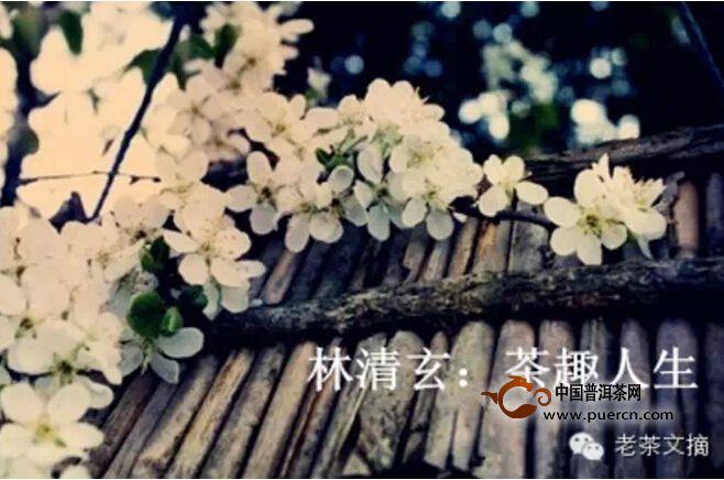 林清玄:茶趣人生