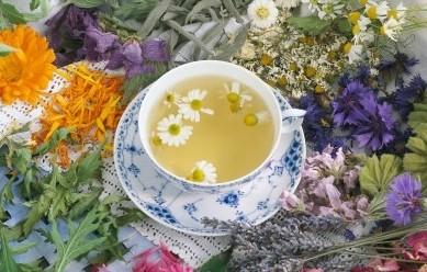 你该喝什么茶?