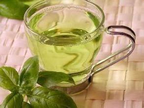 减肥就多喝杜仲茶