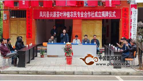 凤冈县蜂岩:兴源茶叶种植农民专业合作社成立