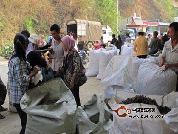 云县忙怀乡:春茶价格每公斤16元至26元