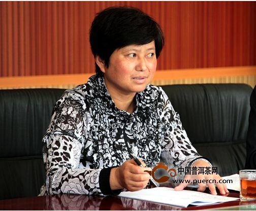 凤庆县县委副书记、县长张世兰在座谈会上发言