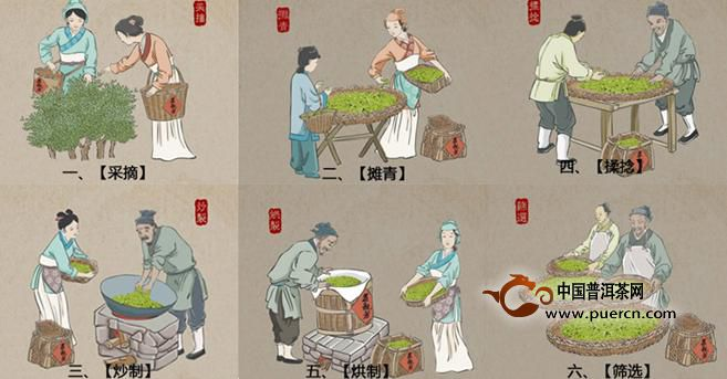 茶叶制作过程-茶叶的制作过程