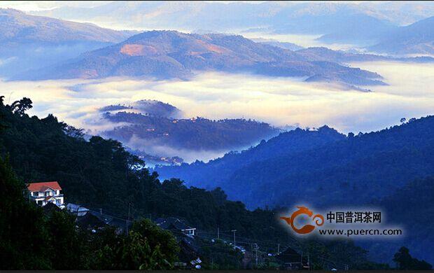 第七届勐海茶王节开幕 勐海建设中国普洱茶第一县
