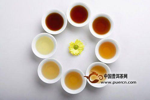 怎么喝普洱茶?