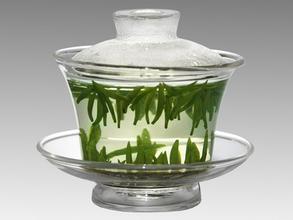 茶叶中有利于养生的功能性成分
