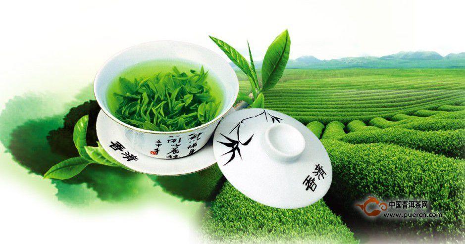 绿茶的禁忌与注意事项