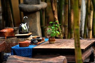 茶道中饮茶环境的要求与设计