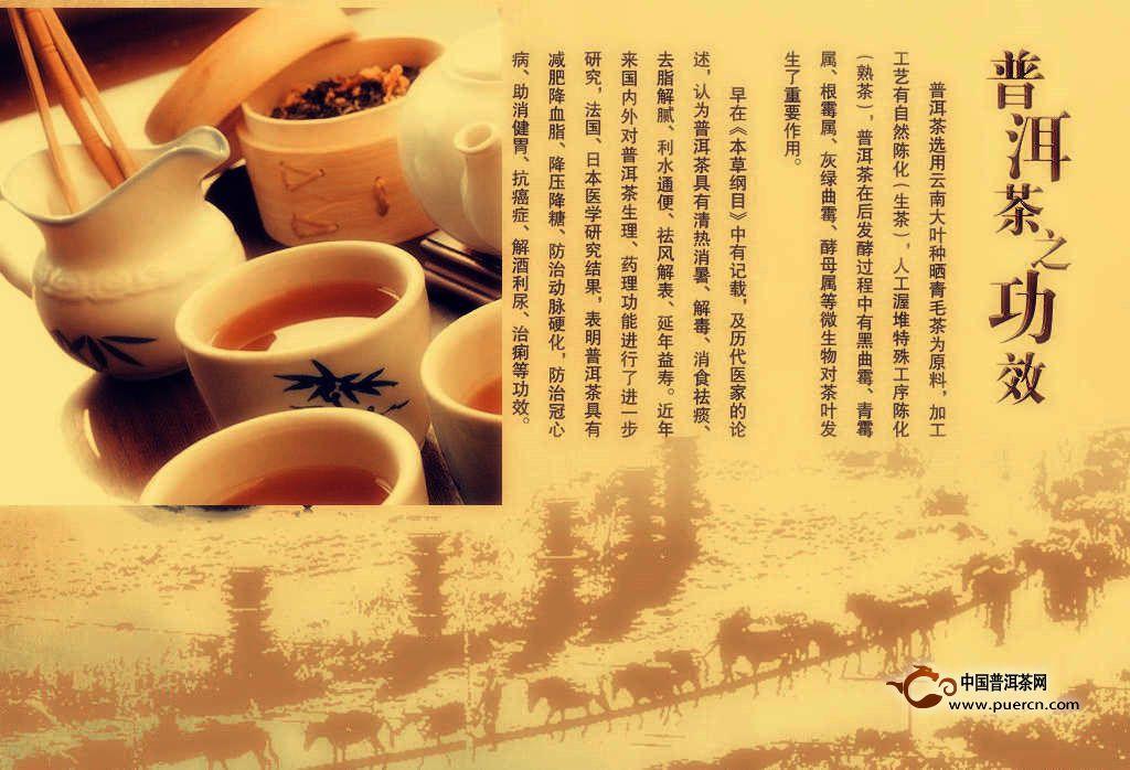 温文尔雅的普洱茶