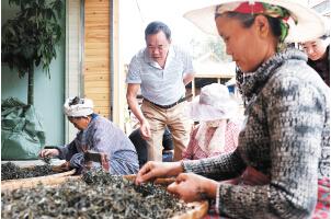 做茶生意多年,经验丰富的车立富能迅速分辨茶的好坏