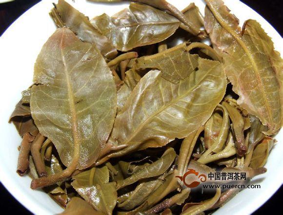 【今日话题】:普洱茶的活性是什么意思?