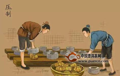 漫画图解:普洱茶饼制作全过程