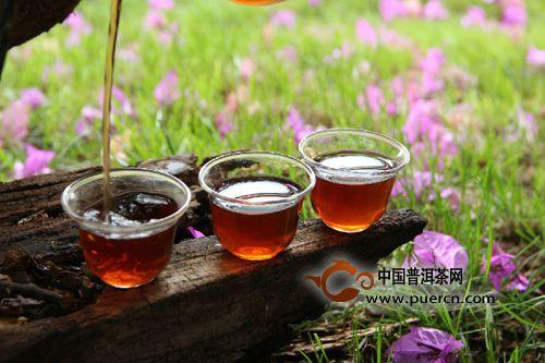 【普洱早课】关于普洱茶年份的七个阶段